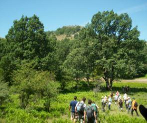 turismo, actividades, rurales, albacete, ecoturismo